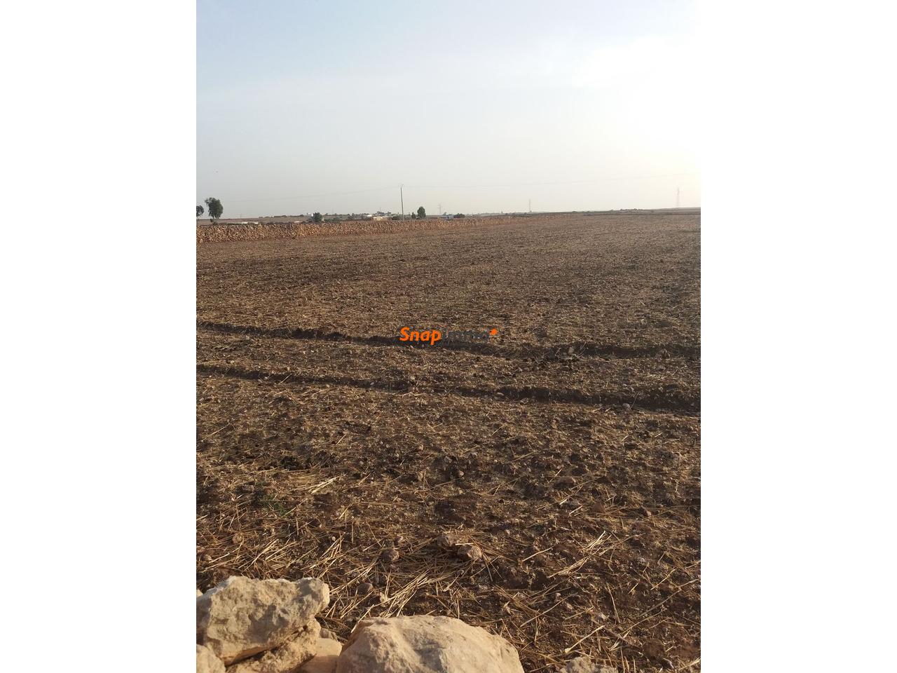 Terrain 1.5 hectare o nase a sidi ismail el jadida - 1/4