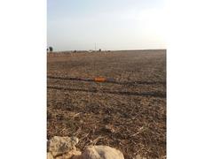 Terrain 1.5 hectare o nase a sidi ismail el jadida - Image 1/4
