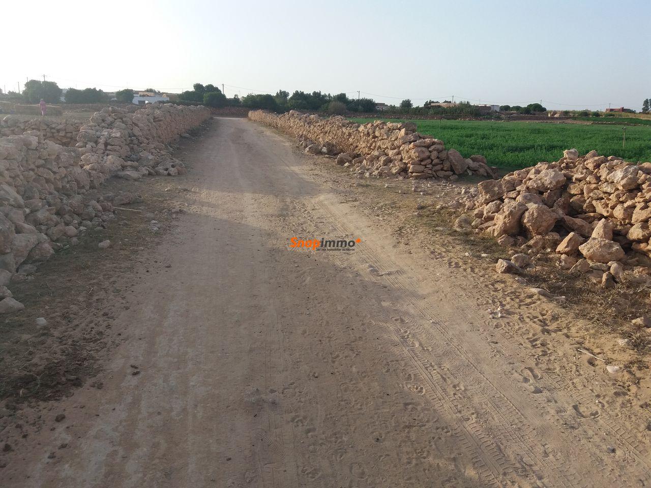 Terrain 1.5 hectare o nase a sidi ismail el jadida - 3/4