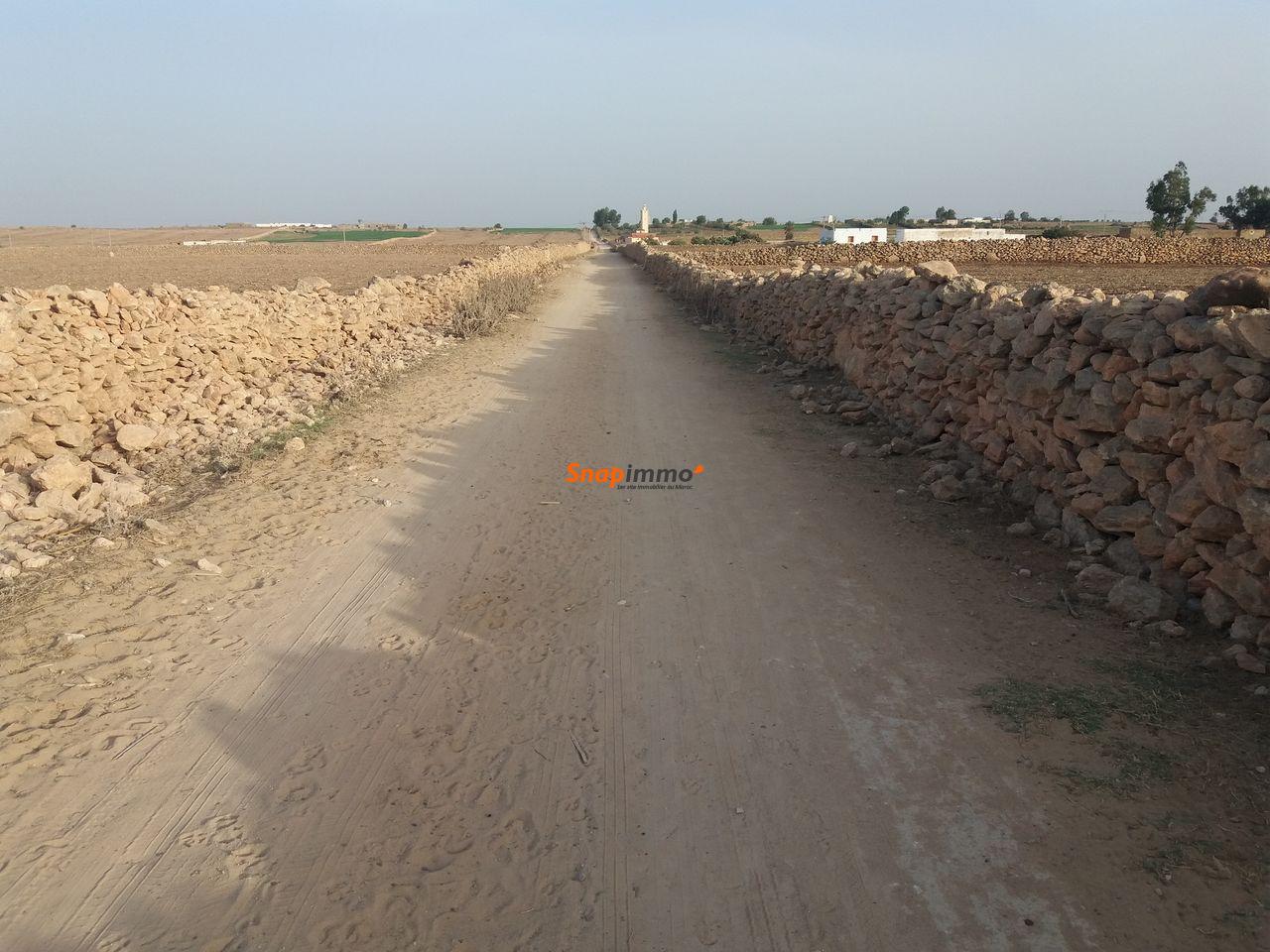 Terrain 1.5 hectare o nase a sidi ismail el jadida - 4/4