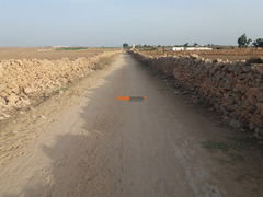 Terrain 1.5 hectare o nase a sidi ismail el jadida - Image 4/4