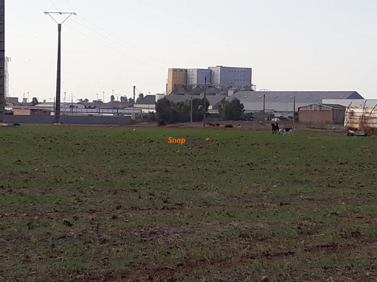 Vente terrain à Casablanca au prix de 800 dhs/m² Gsm 0637846987 / 0617016696 - 1/6