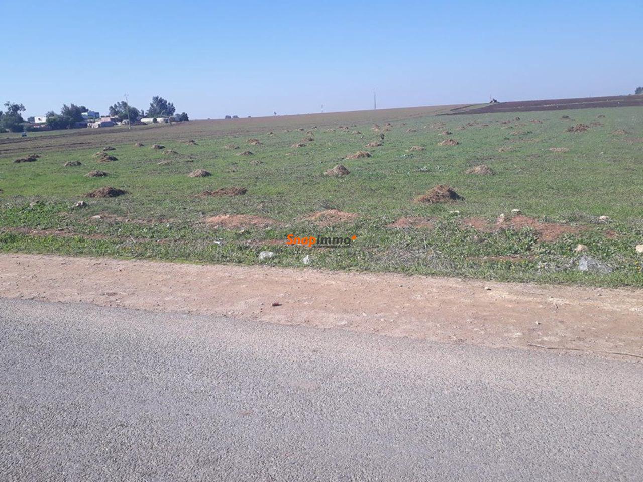 Vente terrain à Casablanca au prix de 800 dhs/m² Gsm 0637846987 / 0617016696 - 2/6