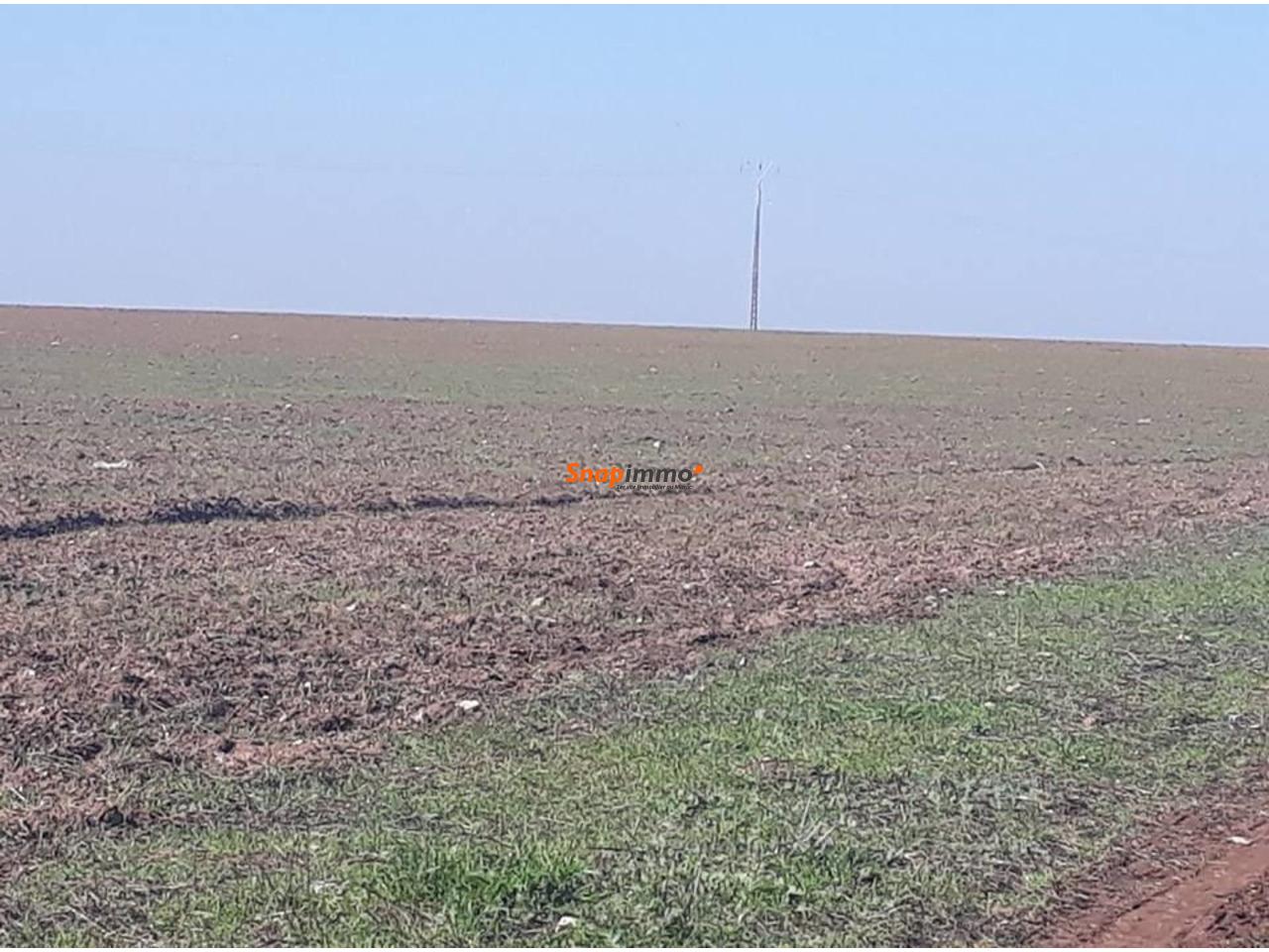 Vente terrain à Casablanca au prix de 800 dhs/m² Gsm 0637846987 / 0617016696 - 3/6