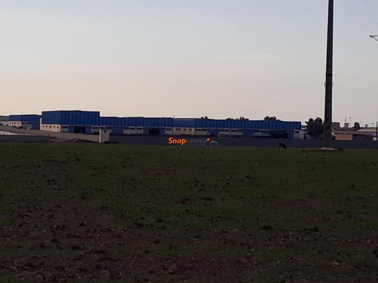 Vente terrain à Casablanca au prix de 800 dhs/m² Gsm 0637846987 / 0617016696 - 4/6