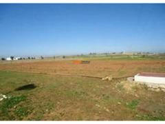 3000 hectares 2 ème bornage sur Tata